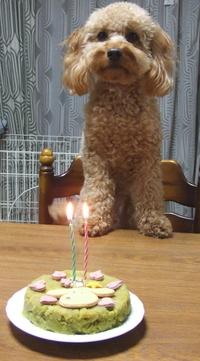 Birthday2_2